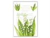 7346_fresh-scents-lily-of-the-valey-big-for-webshop